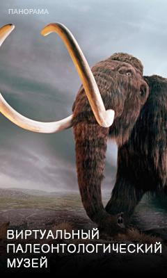 Виртуальная экскурсия по Московскому палеонтологическому музею